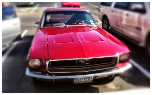 Another Red Mustang