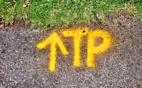 Yellow Arrow TP