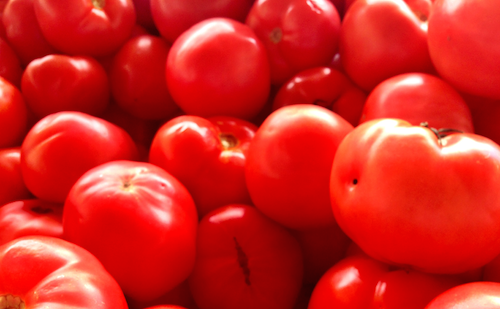 Red Farmer Tomatoes