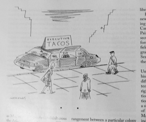 Perfect Cartoon