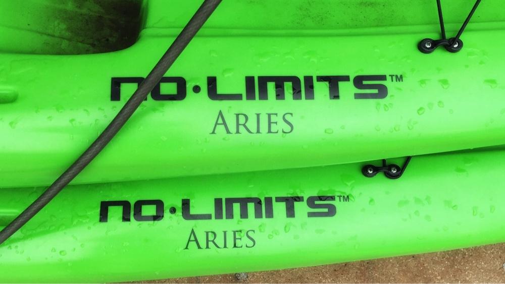 Double Aries