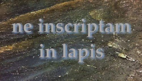 Ne Inscriptam in Lapis